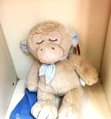 monkey-teddy