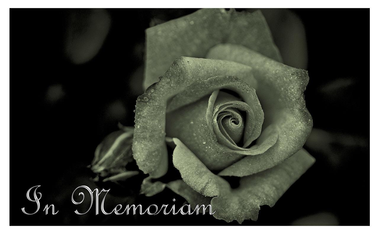 Funeral Flowers Delivery Uk Funeral Letters Floral Arrangements