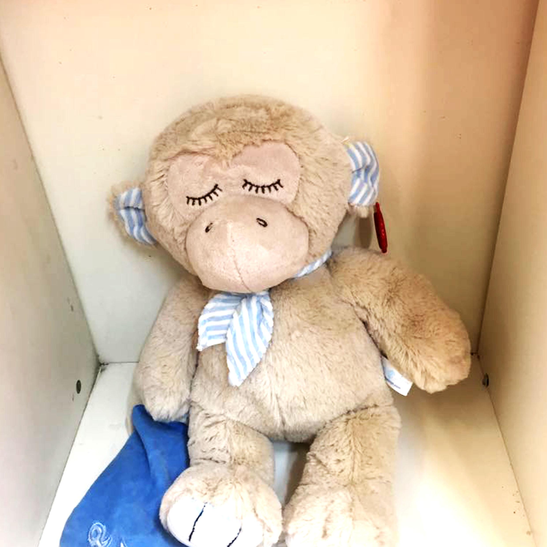 monkey-teddy