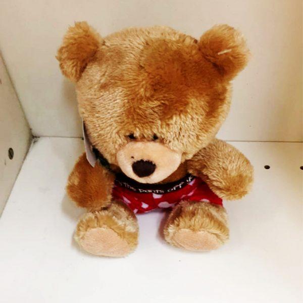 mr-fancy-teddy