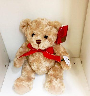 small-teddy